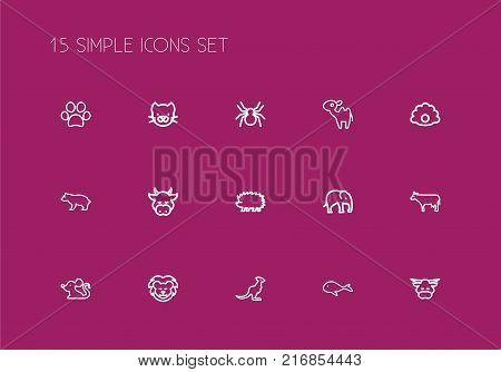 Set Of 15 Editable Animal Outline Icons. Includes Symbols Such As Lion, Kitty, Spinner And More