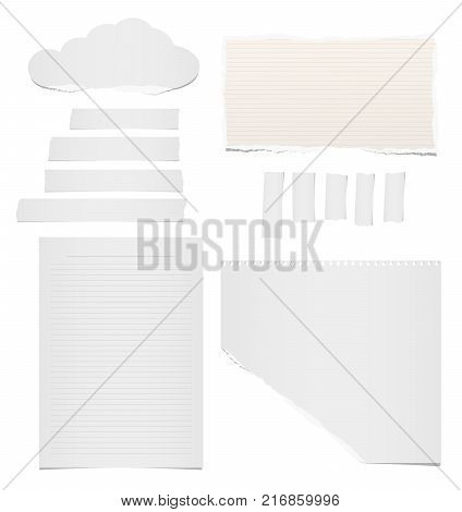 Ripped blank lined and blank note, notebook, adhesive, masking tape paper for text or message stuck on white background.