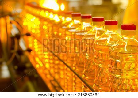 Oil In Bottles. Industrial Production Of Sunflower Oil. Conveyor Line For Bottling And Packing. Sunf