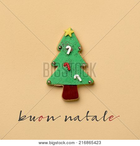 a coloroful cookie in the shape of a christmas tree and the text buon natale, merry christmas in italian, on an orange background