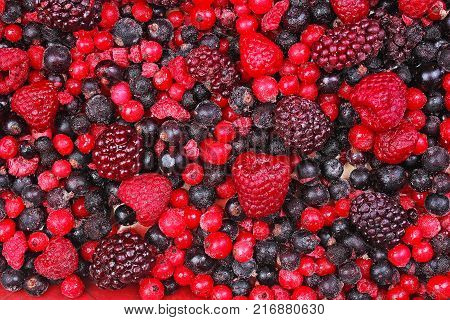 Frozen mixed berries as background. Blueberries, raspberries black berries and currant mulberry texture pattern. Berries.