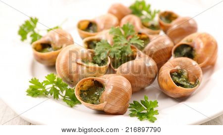 french escargot with butter and parsley