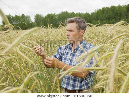El agricultor en el campo