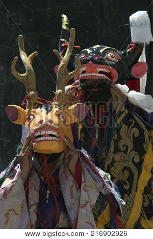 Buddhist monks in ritual masks Yellow Deer and Blue Yak perform the Dance of Tsam during the Tibetan mystery, the Himalayas.