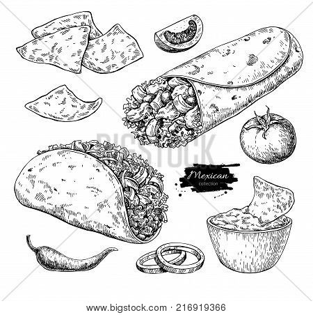 Mexican food drawing. Traditional cuisine vector illustration. Engraved taco, burrito, nachos and vegetable. Hand drawn fast food snack. Sketch for restaurant menu, label, banner