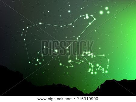 Ursa Minor and Major on nigt sky with forest landscape. Bear in shiny constellation and star poligon in northern hemisphere with Northern Lights. Starry minor and major Ursa, vector art illustration