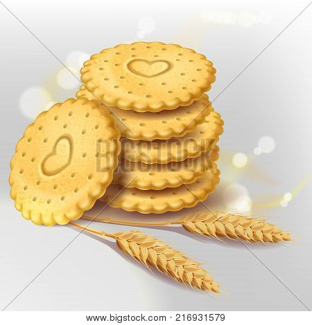 Stack of round biscuit cookies or cracker with heart ornament and wheat ears near them, vector isolated on white background with light elements. Healthy sweets, whole wheat biscuit