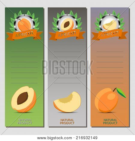 Abstract vector icon illustration logo for whole ripe fruit yellow apricot slice half veg. Apricot pattern consisting of card label natural sign vegan food.Eat sweet fresh raw fruits exotic apricots