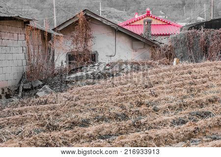 House With A Bright Red Roof