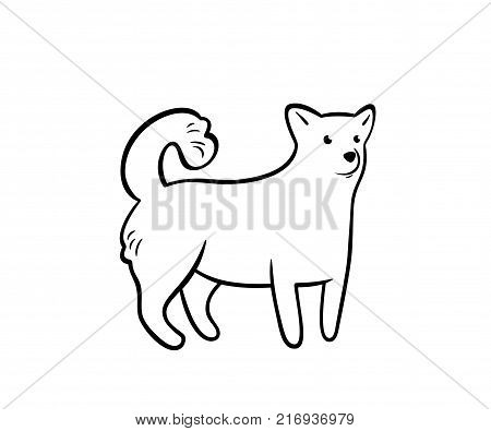 Vector frendly dog, isolated on white background