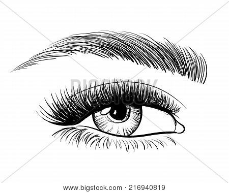 Hand-drawn Beautiful Female Eye, Sketch. Black And White Beauty Eye. Makeup, Beauty Salon Symbol. Vi