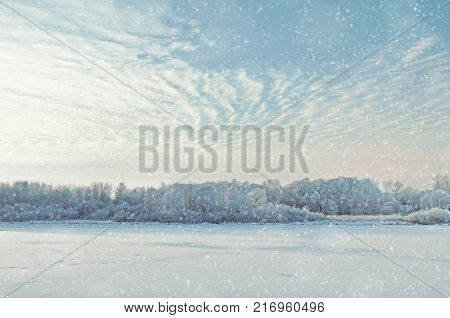 Snowy winter trees along the bank of the river in the thin winter  cold fog at the sunset - winter picturesque landscape. Sunny winter landscape scene. Cold winter weather, beautiful winter nature