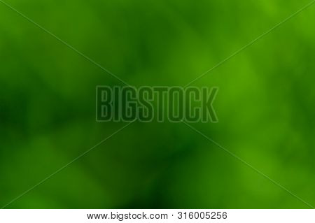 Natural Abstract Blurred Green Background. Eco Concept