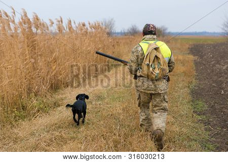 Hunter With A Gun And A Dog Go On The First Snow In The Steppe, Hunting Pheasant In A Reflective Ves