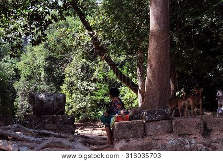 Little Girl And Stray Dogs Near The Ruins In The Rainforest.