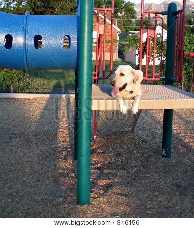 Lab On Playground