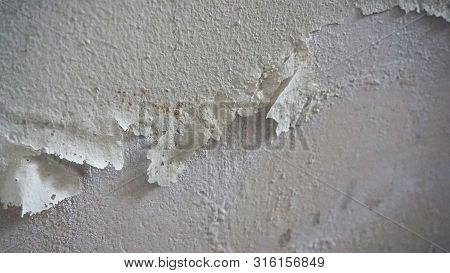 Mold And Fungi On The Damp Wall, Mold Formation, Moisture And Mold,