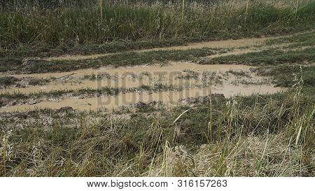 Muddy Roads, Muddy Swamp Road, Muddy Roads Caused By Rain,