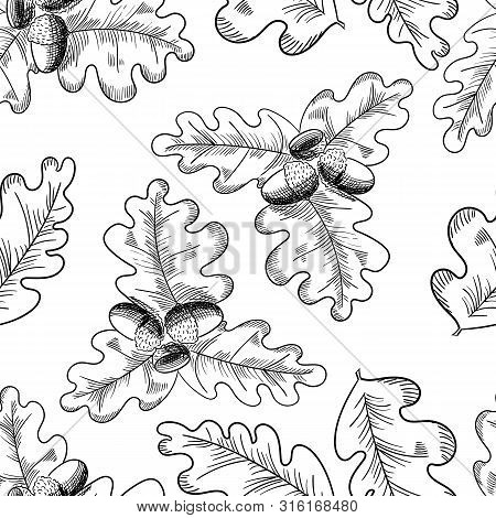 Vector Oak Leaf And Acorn Drawing Seamless Pattern. Autumn Elements.