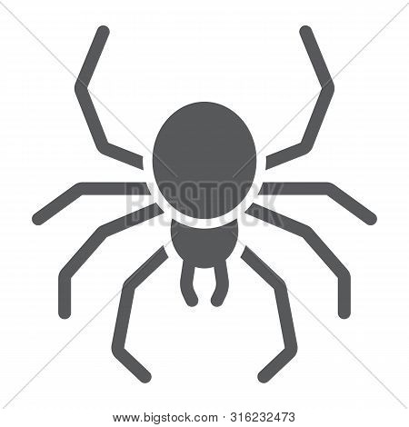 Spider Glyph Icon, Spooky And Animal, Arachnid Sign, Vector Graphics, A Solid Pattern On A White Bac