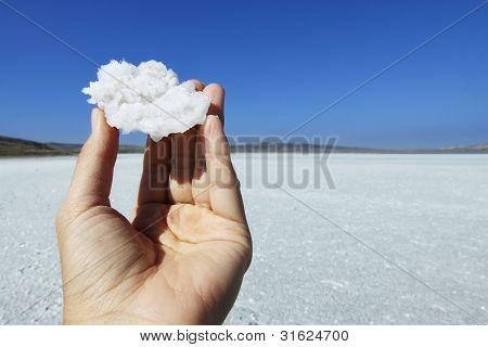 Crystal Of Salt In Hand