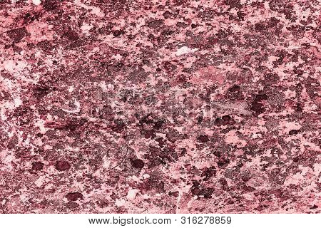 Vintage pink background. Rough painted wall of fiesta color. Imperfect plane of rosy colored. Uneven old decorative toned backdrop of rouge tint. Texture of pink hue. Ornamental stony surface. poster