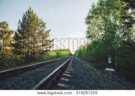 Scenery With Railway In Perspective Across Forest. Journey On Rail Track. Sleepers And Rails. Vanish