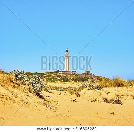 The Cabo De Trafalgar Cape Natural Park With The Famous Lighthouse In The Background. Barbate, Los C