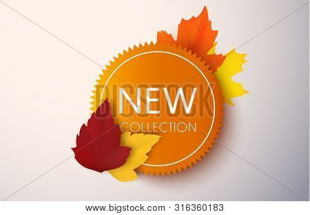 New Collection Badge. Autumn Sale Vector Banner With Autumn Leaves. Price Tag Or Label.