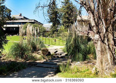 Lisbon, Portugal- March 17, 2019: Beautiful Gardens Of Gulbenkian Museum In Lisbon, Portugal. Sunny