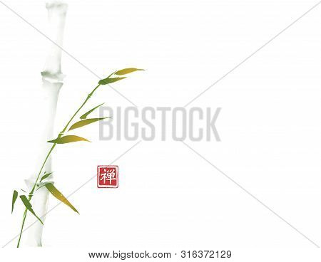 Green Bamboo Tree Hand Drawn With Ink In Minimalist Style On White Background. Traditional Oriental
