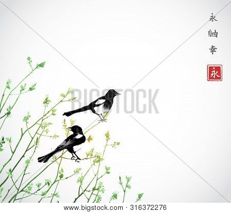 Young Trees And Two Magpies Birds. Traditional Oriental Ink Painting Sumi-e, U-sin, Go-hua. Hierogly