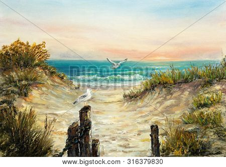 Original  Oil Painting Of Ocean Beach Dunes With Seagulls  On Canvas.modern Impressionism, Modernism