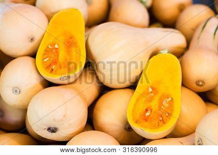 Fresh Honeynut Butternut Squash At A Produce Stand. Raw Orange Organic Butternut Squash Ready To Bak