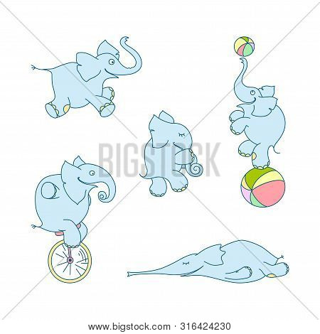 Vector Illustration Of Cute Cartoon Elephant Set. Cheerful Elephant-juggler With Ball, Elephant-clow