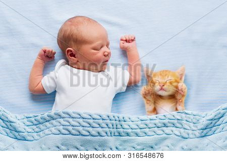 Baby Sleeping With Kitten On Blue Knitted Blanket. Child And Cat. Kids And Pets. Newborn Kid With Hi