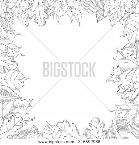 Autumn Leaves Frame In A Sketch Style. Maple And Oak Trees.