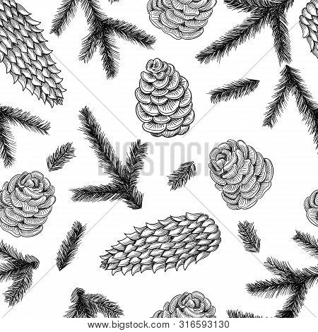 Seamless Pattern Cones And Pine And Spruce Tree Branches. Vector Sketch Hand Drawn Illustration.