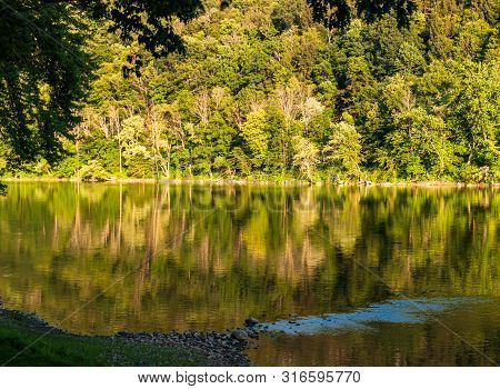 The reflection of summer trees on the Allegheny river in northwest Pennsylvania, USA on a sunny day poster