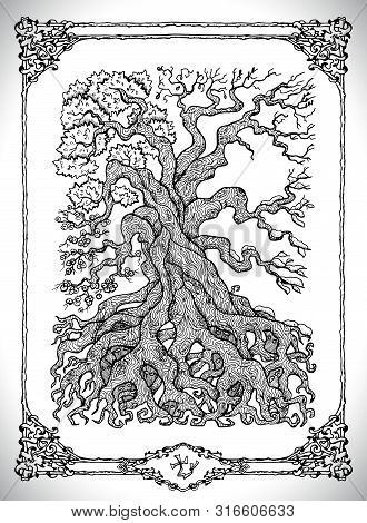 Symbol Of Four Calendar Year Seasons And Old Tree. Vector Line Art Mystic Illustration. Engraved Dra