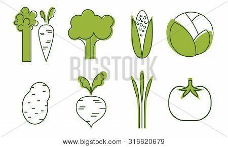 Fresh Vegetables Icons Set, Cabbage, Beet, Tomato, Broccoli, Asparagus, Carrot, Corncob, Organic Hea