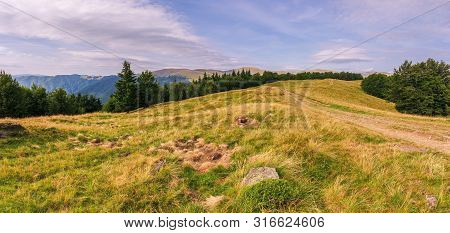 Beautiful Mountain Landscape In Afternoon. Forest On The Grassy Meadows. Clouds On The Sky. Wonderfu