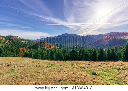 Beautiful Mountain Landscape In The Morning.  Forest On The Grassy Hills. Clouds On The Sky. Wonderf