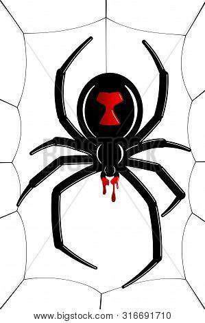 Spider Black Widow, Cobweb. Red Black Spider 3d, Spiderweb, Isolated White Background. Scary Hallowe