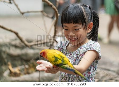 Child Is Feeding A Bird, Bird Is Standing On Hand.