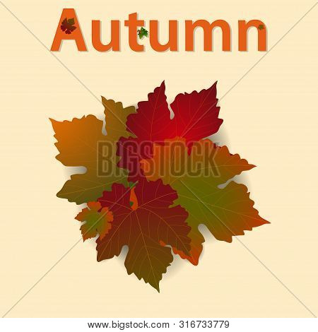 Autumn Fall Background With Leafs With Shadow And Autumn Text Decorated With Leafs And Acorns