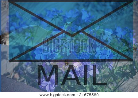 peace mail