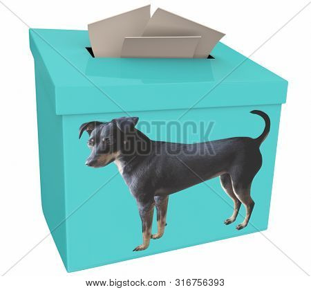 Dog Animal Pet Vote Suggestion Box Ballots 3d Illustration