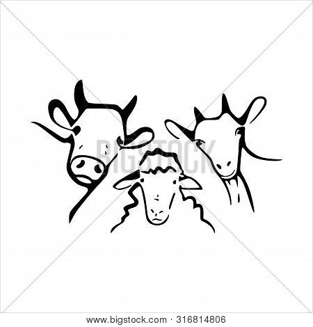 Silhouette Of A Buffalo And Goat Icon. Isolated White Background. National Park Infographic, Logo Gr