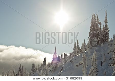 Snowy Landscape in Winter Mountains
